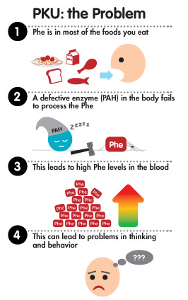 PKU: The Metabolic Breakdown