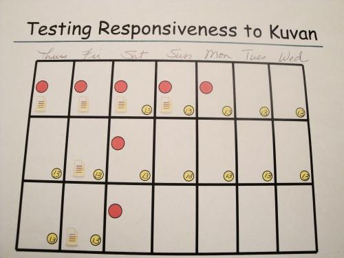 PKU Kuvan Responder Trial